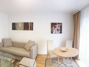Studio Apartment Wien - Leitgebgasse -